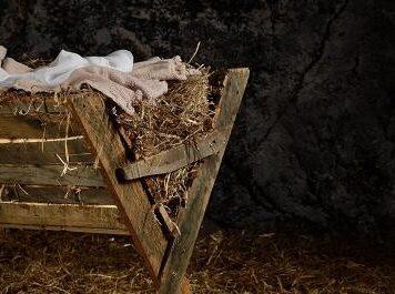 Christmas 3 - Jesus is born