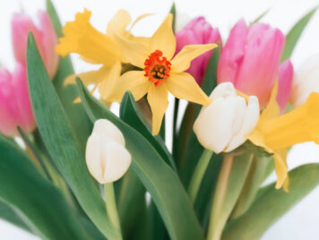 Mothering Sunday topic image
