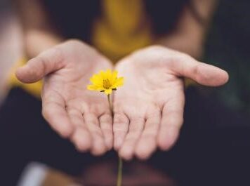 Friendship and Forgiveness: what Jesus said