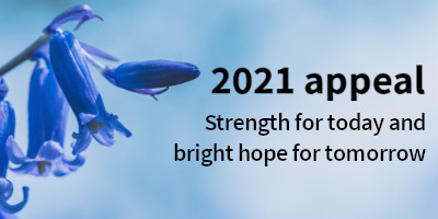 Bluebells for the 2021 appeal