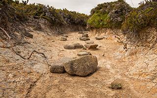 Dry creek bed in Tasmania, Australia