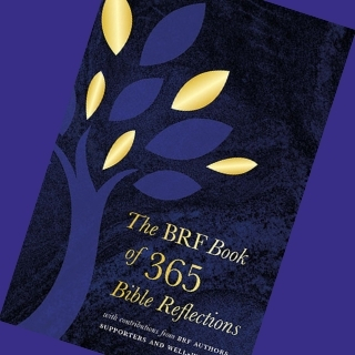 The BRF Book of 365 Bible Reflections